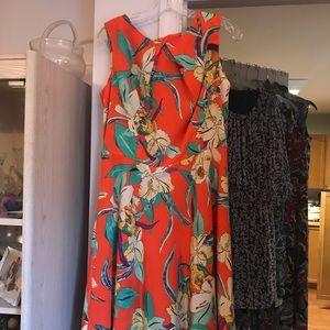 Beautiful Dress Barn dress